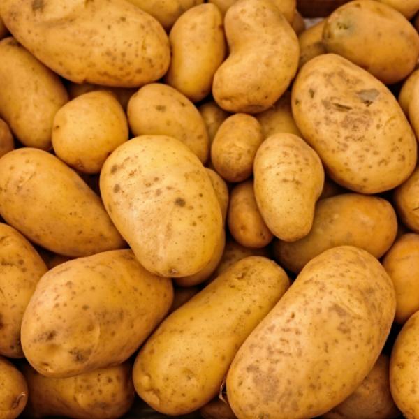 Ziemniaki  ekologiczne 1 kg