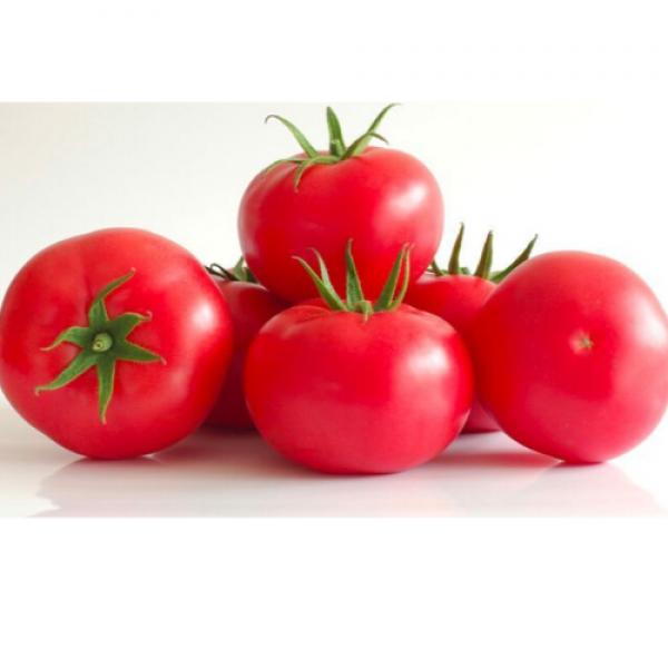 Pomidor malinowy ekologiczny