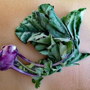 Kalarepa fioletowa EKO od M. Buksa